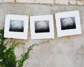Moonrise, Charmed Meadow, etching on handmade paper