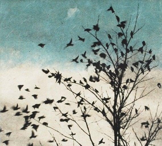 Art print , bird print, February Visit, Doves Fly Away