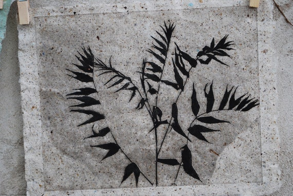RESERVED, Botanical Print, Sumac Silhouette