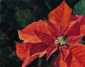 Poinsettia Red Flower Christmas Holiday Painting Art Print Original Watercolor, Etsy Floral Reproduction Home Decor Gift, Barbara Rosenzweig