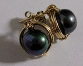 Gold filled Wire Wrapped Stud Earrings with Round Black Pearl FREE SHIPPING