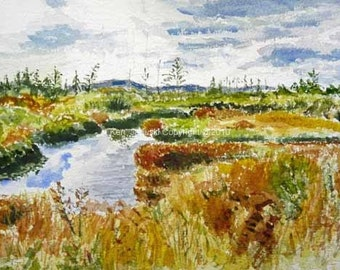 Freeland Road Pond at Canaan Valley NWR Watercolor Painting