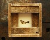 Passage--- Seedpod in Reclaimed Wood Frame