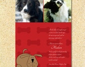 Photo Pet Adoption Announcement, Pet Birthday Party, New Pet Announcement, Birth Announcement, Holiday card Bones About It