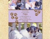Pet Adoption Announcement -Paws of Love- Photo, Pet Birthday Party, Birth Announcement, Holiday card.