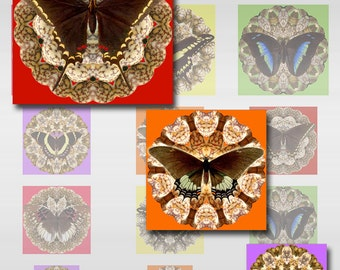 Butterfly Mandala Combo Sizes 1, 1 1/2, 2 Inch Squares Instant Download Digital Image Collage Sheet JPEG (J-19)