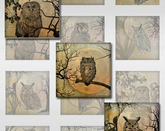 Owl Moon Ephemera Botanical Instant Download for Glass Resin Scrabble Tile Pendants Square JPEG Images 1 and 2 Inch (S-22)