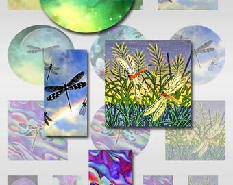 Dragonflies Instant Download Sampler Sheet 2 inch Squares Rounds 1 x 2 Domino Size Digital JPEG Images (12-67)