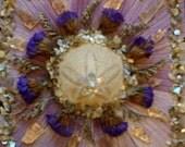 Sand Dollar Mandala- Mixed Media Collage- OOAK framed original artwork