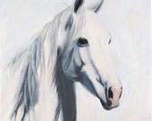 Prints of Mustang Mama