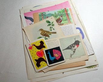 Vintage Ephemera Collage Kit  - Birds 3