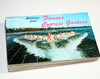 75 Vintage Cypress Gardens Florida Chrome Postcards Blank - Wedding Guestbook