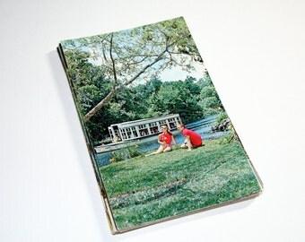 25 Vintage Silver Springs Florida Chrome Postcards Blank - Wedding Guestbook