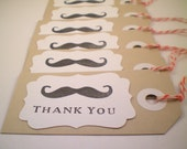 Custom listing for Christina Carnival Mustache Thank You Tags