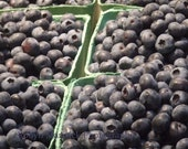 Fresh Blueberries, Vancouver, Canada, 2011 - 8''x8'' Fine Art Photograph