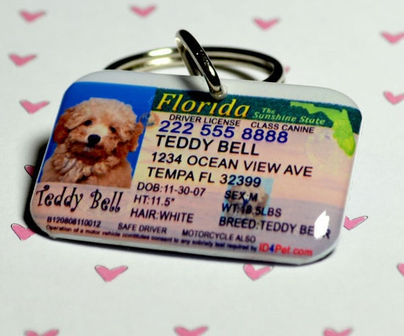 Florida Drivers Handbook >> Items similar to Dog Tags - Florida Driver License Pet ID Tags on Etsy