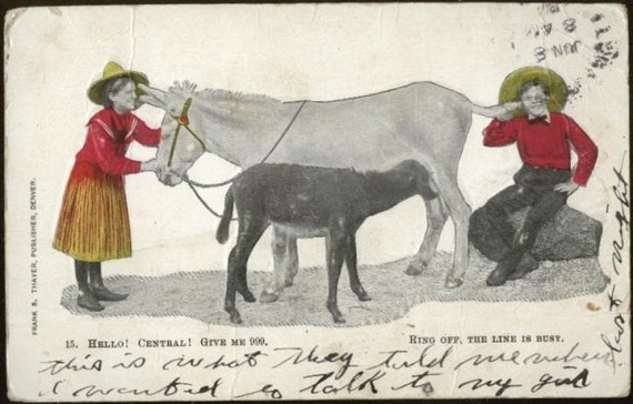 Cotopaxi Colorado Donkey Telephone Postcard Telephony Funny