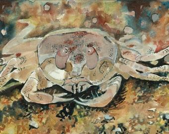Original Watercolor Painting, Fine Art PRINT, Original Art, Crab Watercolor, Ocean Creature, Neutral Painting, Ocean Painting, Sea Creature