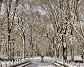 Central Park in the snow New York City NYC 8x10
