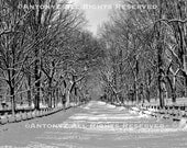 Snowy Day In Central Park, New York City Poets Walk 8x10 Black and White Print