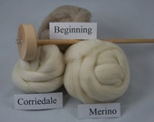Learn to Spin with a Small Sampler
