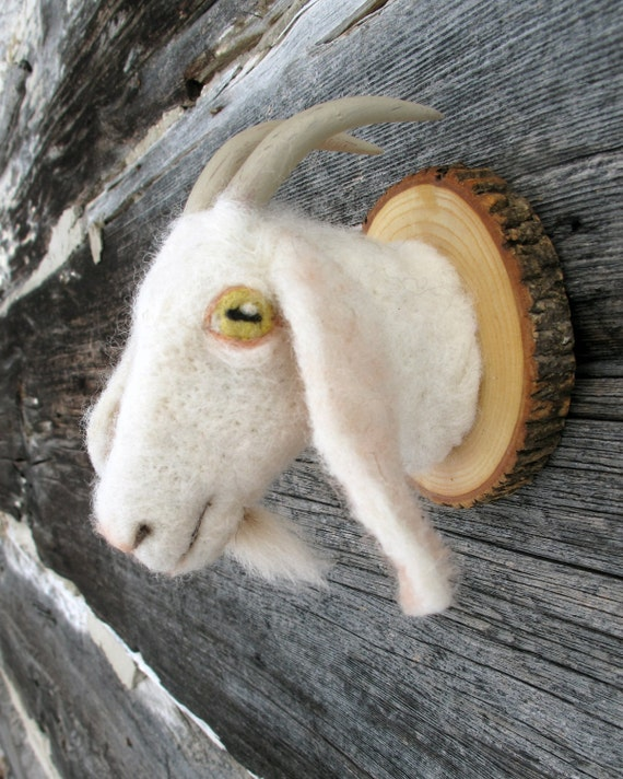 Miniature goat torso