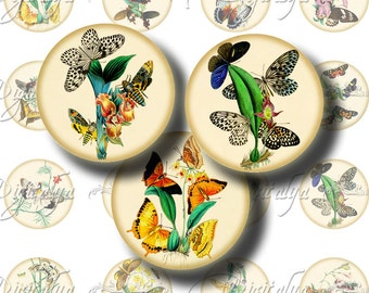 Vintage Exotic Butterflies - Digital Collage Sheet - 24 circles 1.25 inch 32mm or smaller for pendant, magnet