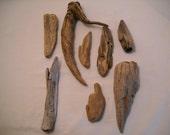 Pacific Northwest Driftwood Pieces/Washington State Driftwood/Olympic Peninsula Driftwood