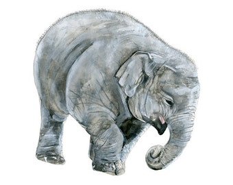elephant baby watercolor print signed by artist Stephanie Kriza