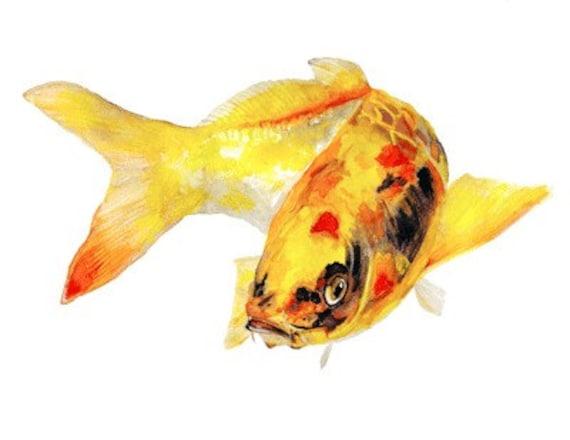 Items similar to yellow koi fish watercolor print signed for Koi fish watercolor