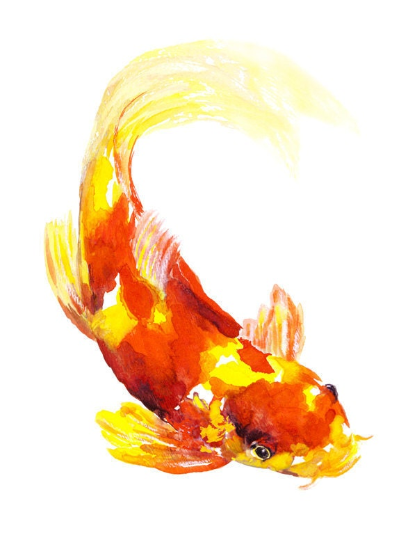 Orange yellow koi fish watercolor print signed by artist for Orange coy fish
