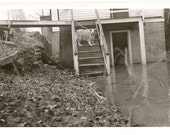 Vintage 1960's photo Dog trapped on porch by rising flood waters