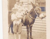 1930's Children ride on pet donkey