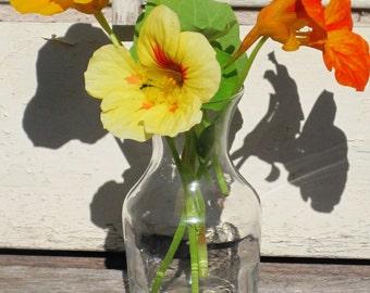 Vintage Small Vase, Glass Decanter Carafe Bud Vase