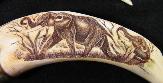 scrimshaw warthog tusk bottle opener south africa handmade art bone brass
