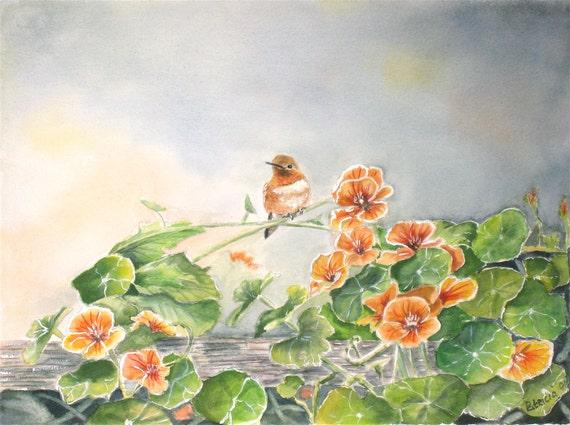 hummingbird and nasturtium painting