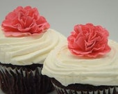 CUSTOM 24 Cupcake Toppers and Cakes, Amazingly Lush Customizable Paper FLowers, 12 for 10.00