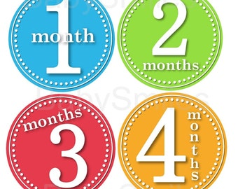 FREE GIFT Baby Month Stickers Baby Monthly Photo Stickers Month Sticker Monthly Baby Milestone Stickers Monthly Bodysuit Stickers