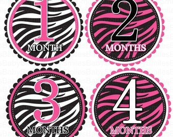 FREE GIFT Monthly Baby Stickers Baby Month Stickers Baby Girl Month Stickers Monthly PhoBody Suit Stickers Monthly Milestone Stickers