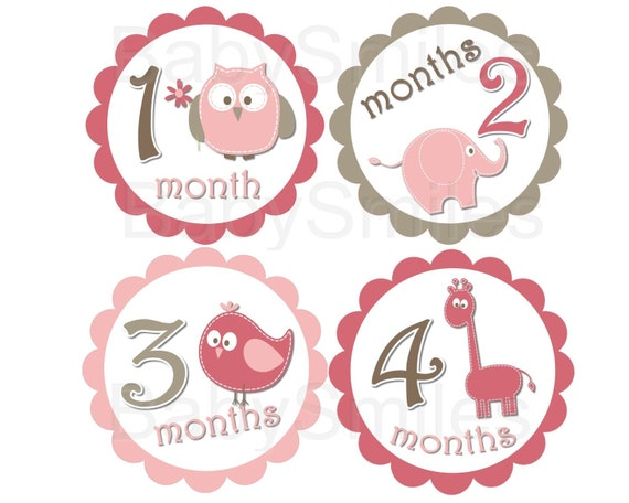 FREE GIFT Monthly Baby Stickers Baby Month Stickers Girl Month Stickers Monthly Bodysuit Stickers Monthly Milestone Stickers Photo Stickers