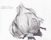"Giclee print ""Garlic-Sidney Farmer's Market"""