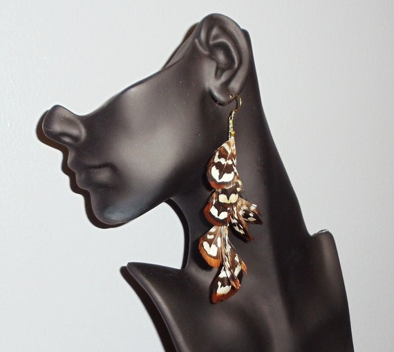 Reeves pheasant feathers gold earrings