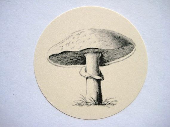 12 Mushroom Tags E842