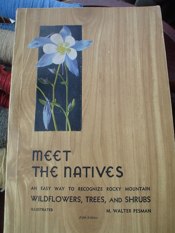 Vintage Rocky Mountain Illustrated Guide to Wildflowers, Trees and Shrubs 1952 Beautiful Mid-Century drawings Walter Pesman