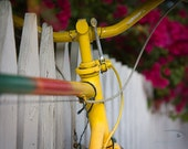 Florida Photography, Florida Art, 12x8'' Key West Art, Old bike, Rustic Bike, Fence and Flowers