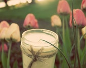 Soy Candle - Raspberry Vanilla - 8 oz Mason Jar - Hand Poured