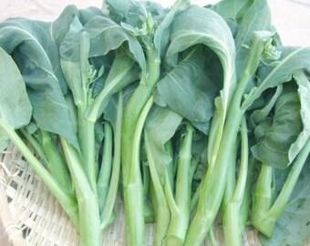 Chinese Crispy Blue Kale- Kailan