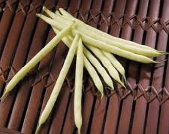 Golden Wax Bush Beans