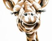 Giraffe. A portrait of Penlope the award winning giraffe. A signed 8 x 10 inch print