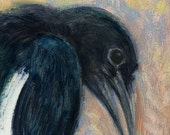 Magpie with cantalope melon is subject of this small oil painting